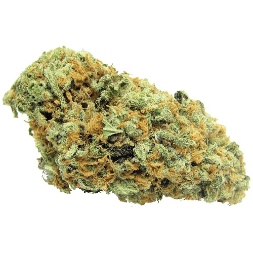 buy green crack online is cannabis strain is a pure Sativa. This bud has sweet fruity/tropical/ citrus flavor.buy green crack online for sale.